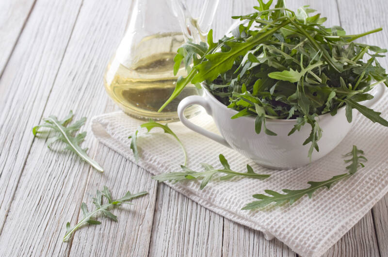 7 Salatsorten: Rucola