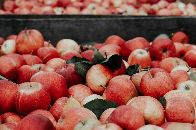 Äpfel Joanna Nix-Walkup (Unsplash)