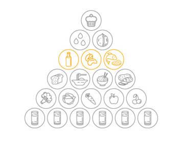 Eiweißanteile der flexitarischen Ernährungspyramide für Mischkost