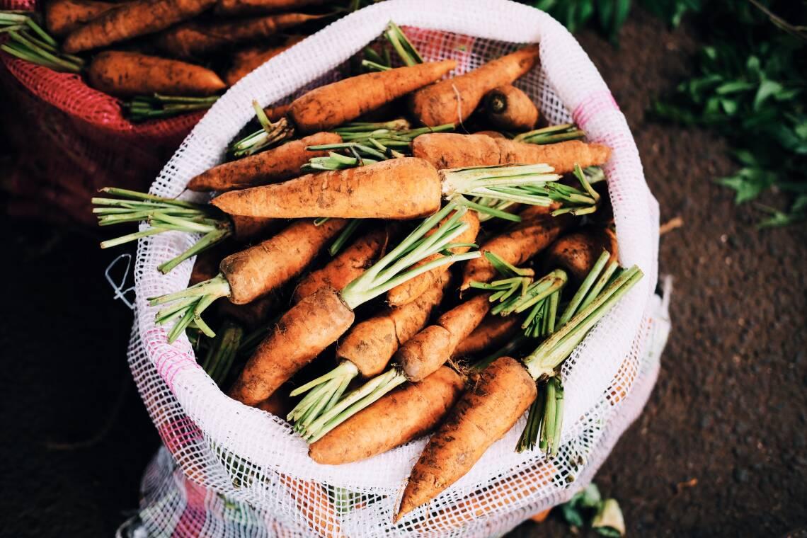 Wie Holländer die orange Karotte erfanden