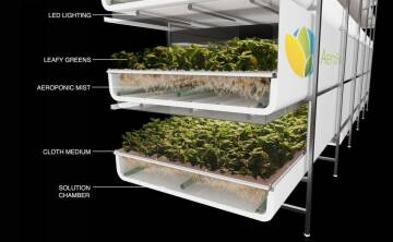 Indoor Farm AeroFarmsGrowTech