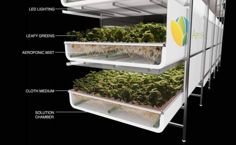 Indoor Farm AeroFarmsGrowTech