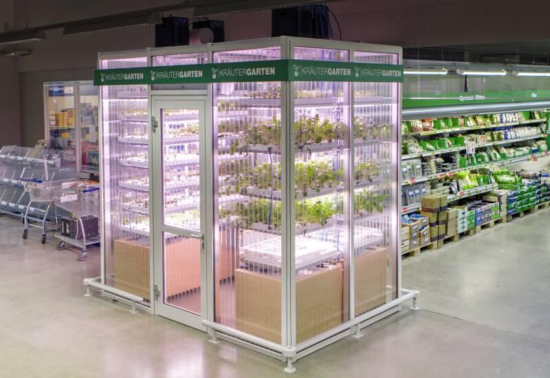 Infarm Gewächshaus in Supermarkt