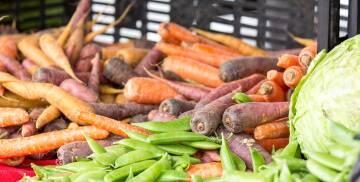 Karotte, violette und Orange, Bohnen grün