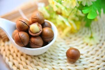 Nuss Facts 1: macadamia