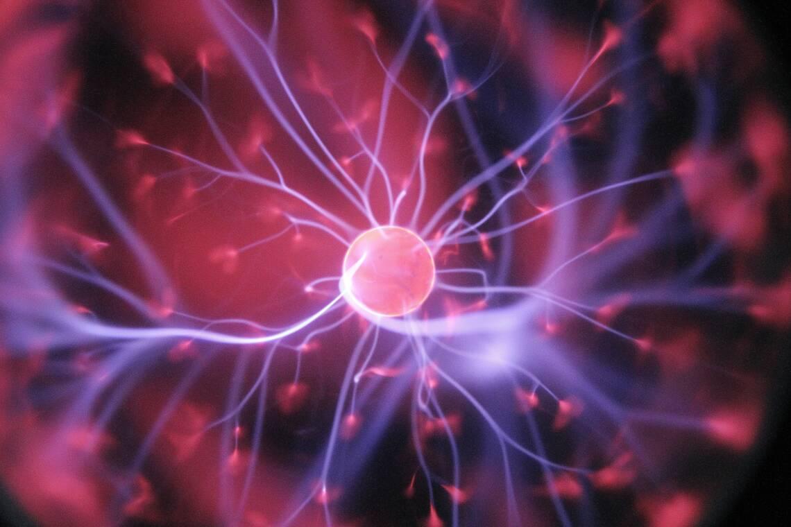 Geheimtipp Caprylsäure: Der Energie-Boost für dein Gehirn