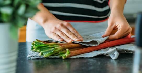 Rhabarber in ein Küchentuch eingeschlagen, damit er lange frisch bleibt