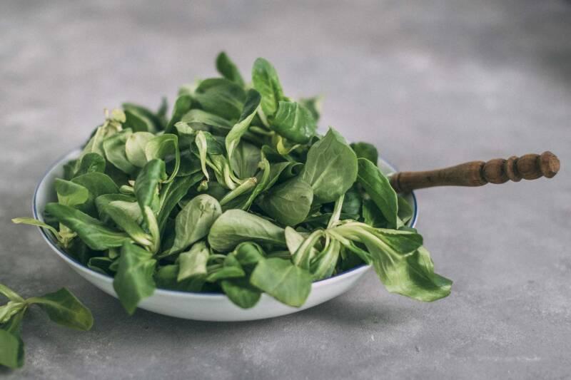 Saisonal im Oktober: Feldsalat