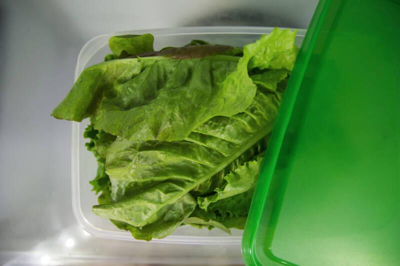 Salate länger frisch - Lagerung