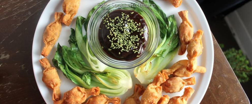 Weißer Teller mit scharfen Wan-Tans, Salat und Pflaumensoße im Gläschen