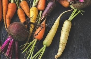 Schrumpelige Karotten wieder knackig machen? Wie das geht, erfährst du in diesem Artikel.