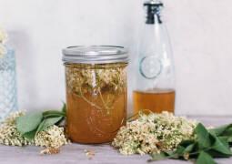 Veganes Rezept: Holunderblütenessig_1