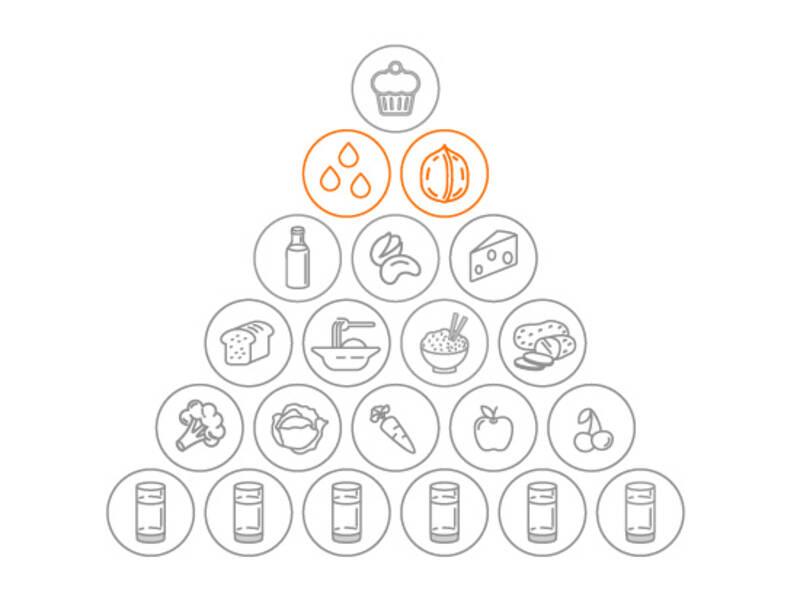 Vegetarische Ernährungspyramide - Fette