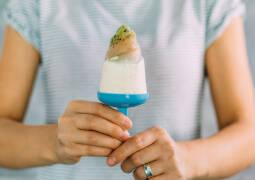 Vegetarisches Rezept: Rhabarber-Kiwi-Eis_1