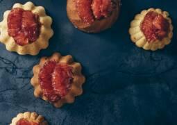 weißes Schokoküchlein mit Grapefruit Filets