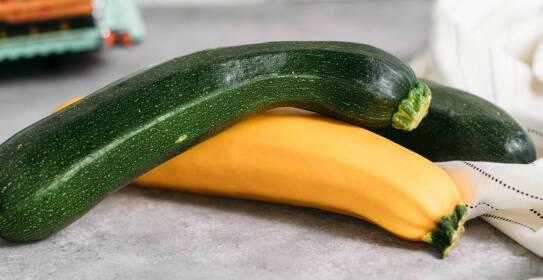 Alles was du über das Einlegen von Zucchini wissen musst, erfährst du in diesem Magazinartikel.